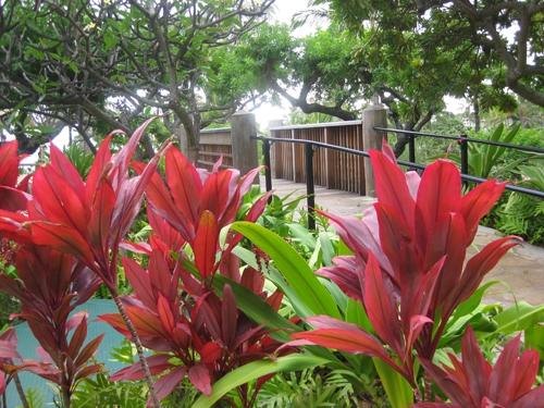 Grand-Hyatt-Kauai-flowers