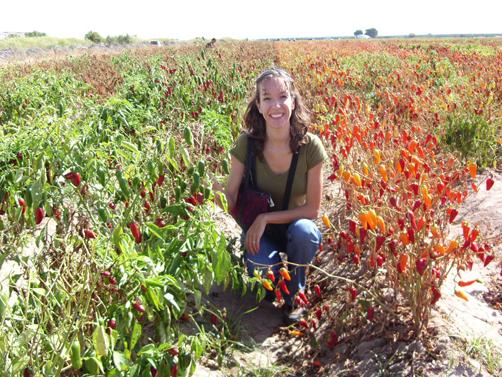 Exploring Mesilla Valley farms