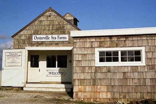 Oysterville Sea Farms