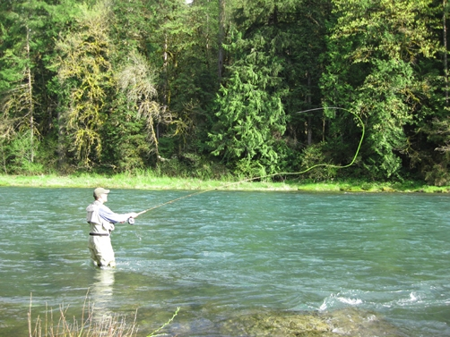 Fishing the Umpqua River in Oregon. Learn about Steamboat Inn & why the Umpqua river fishing is on so many fisherman's bucket list.