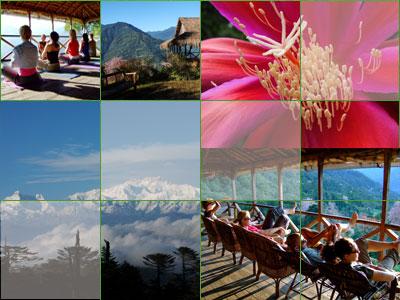 Karmi collage of photos