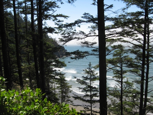 forested mountains that border the beach