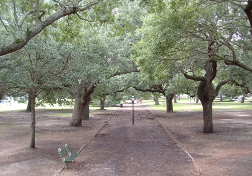 Haunted park in Charleston