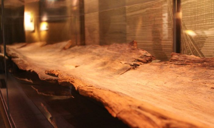 NC-Museum-History_Dug_Out_Canoe