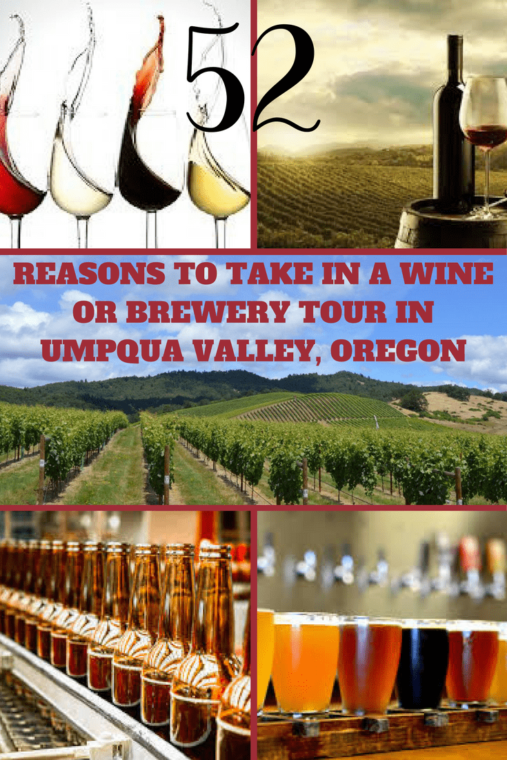 Taking a Brewery Tour in Umpqua Valley is a great way to learn the history and methods of wine and beer making. Home to 26 Wineries and 5 Craft Breweries. #brewery #tour #wine #beer #umpquavalley #oregon