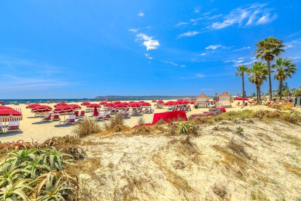 coronado beach in front of The Del