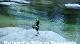 Family fun in Yosemite