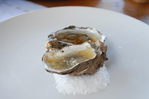 Malva oysters in Valle de Guadalupe