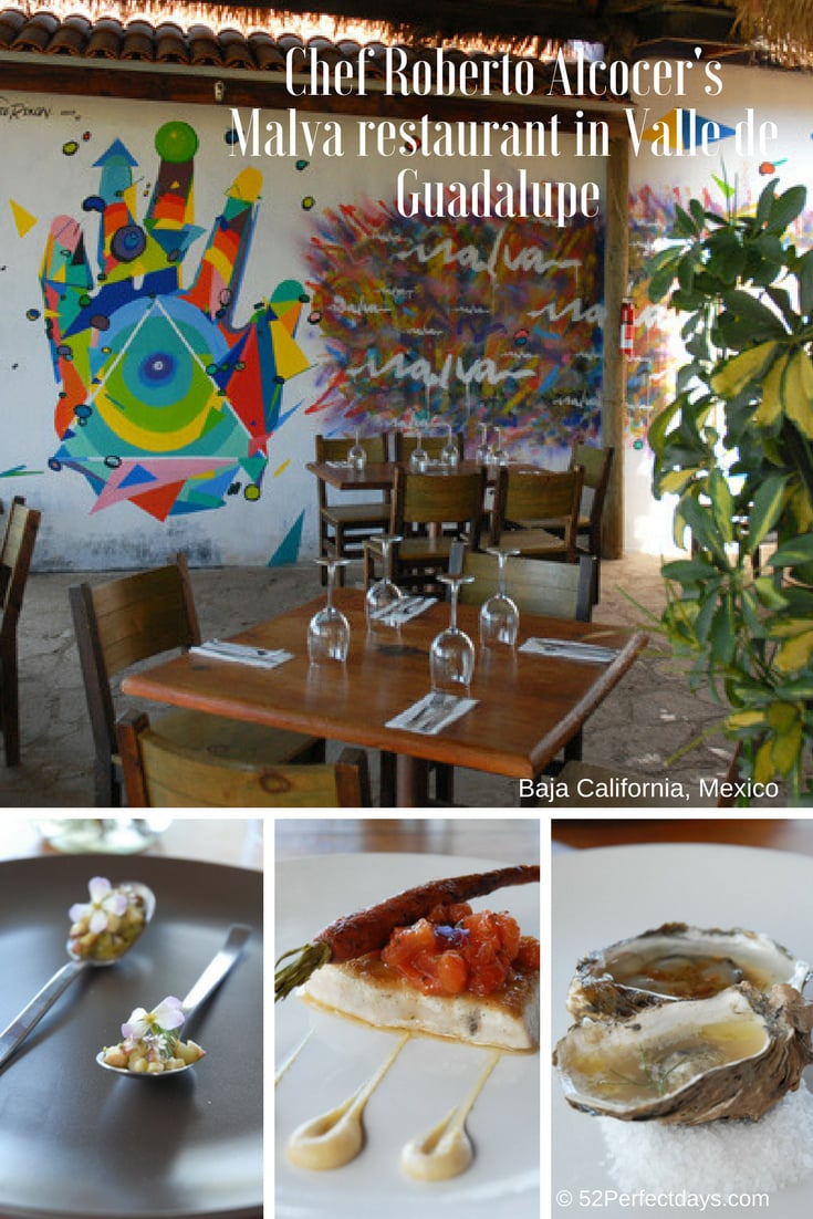 Malva Valle de Guadalupe restaurant sits overlooking a vineyard with an open kitchen and food that is impressive and delicious from Chef Roberto Alcocer. Baja California Cuisine at it's best. #food #travel #mexico #northamerica