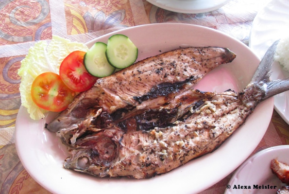 Milk fish known as sugba in the Philippines.
