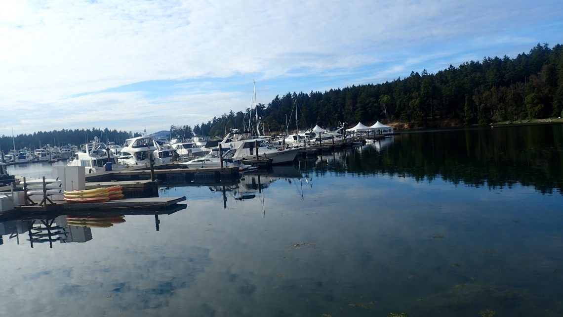 Harbor in San Juan Islands in Washington