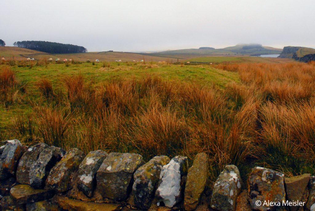 Hadrian's wall footpath in northern, england