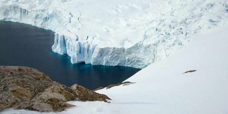 Neko harbor in Antarctica