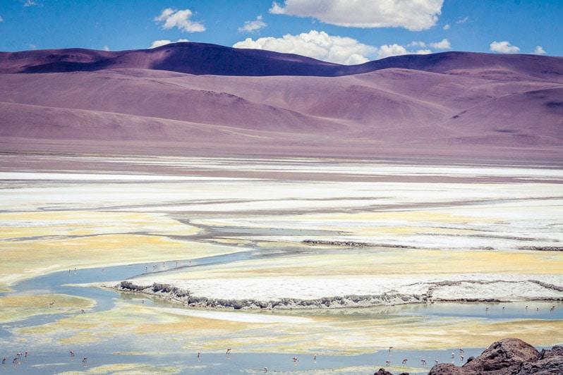 Atacama Salar de Puisa in chile