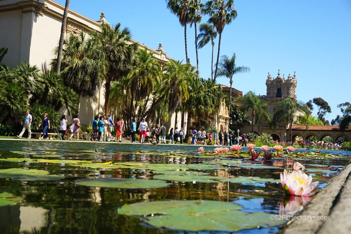 Balboa Park Pond