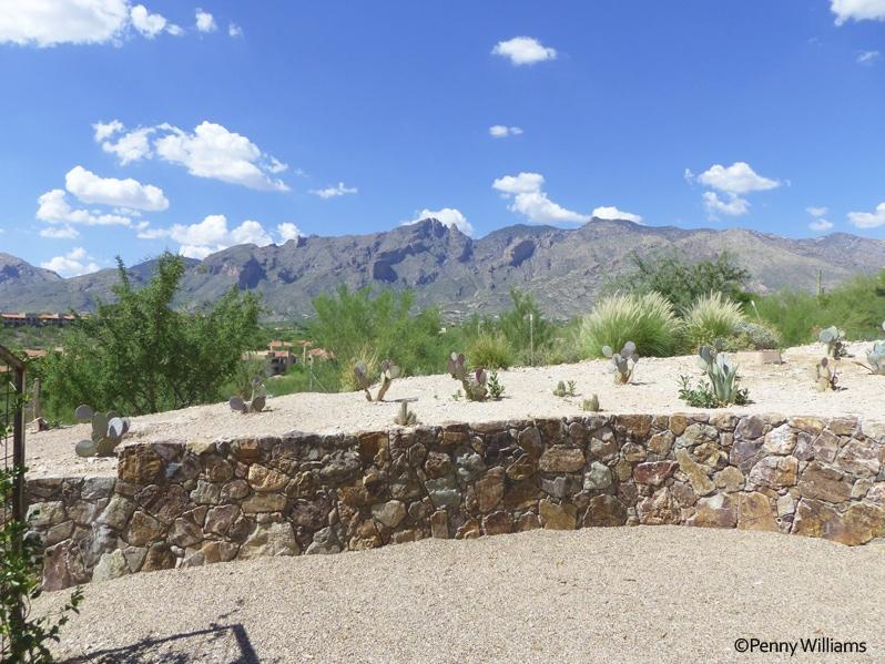 Hacienda Del Sol Guest Ranch Resort, tucson, arizona view of catalina mountains