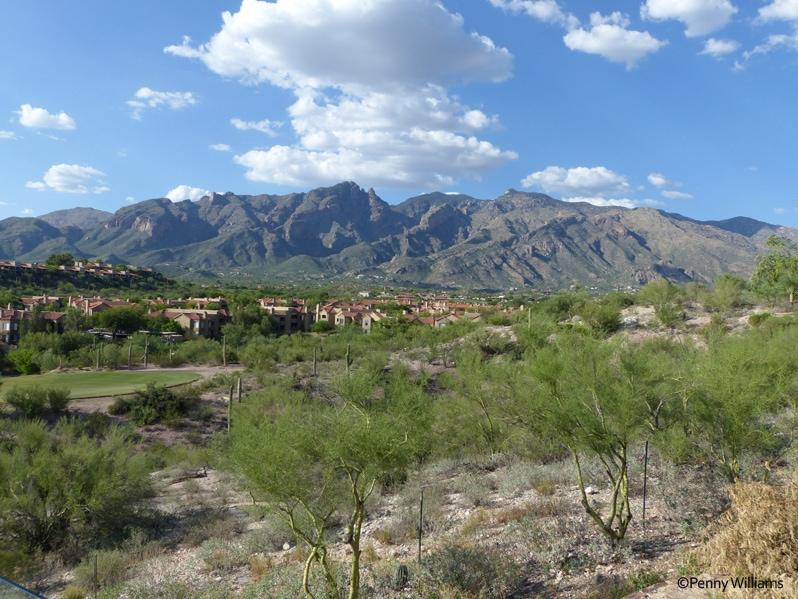 Hacienda Del Sol Guest Ranch Resort, tucson, arizona garden