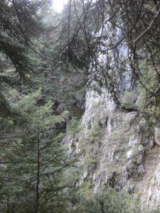 National Forest of Parnassus, Greece