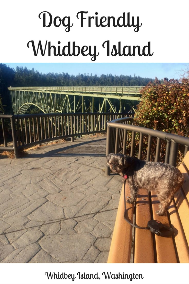 Dog Friendly Whidbey Island