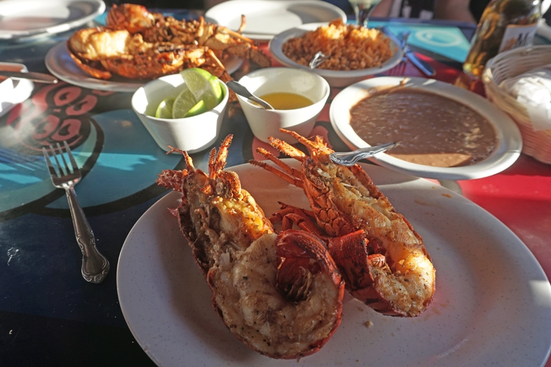Lobster at Angel del Mar in Puerto Nuevo