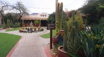 Best Brunch in Tucson