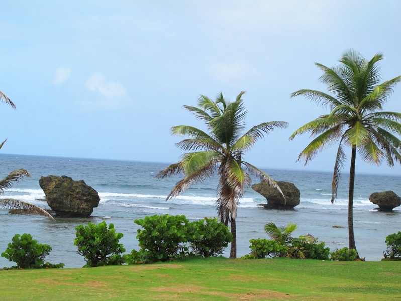 Bathsheba beach in Barbados