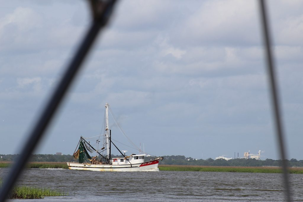 The natural side of St. Simons Island, Georgia: A shrimper bringing home the days' catch