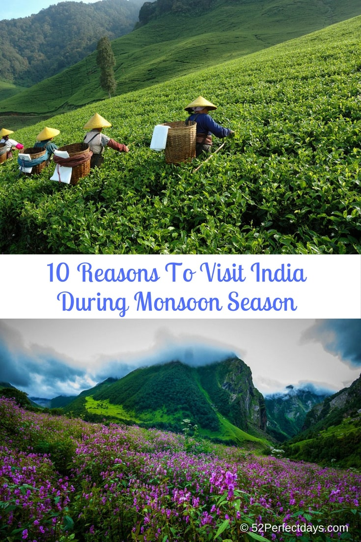 10 Reasons To Visit India During Monsoon Season include treks, Ayurveda, festivals, backwaters, beautiful places to visit and much more. #india #asia #monsoonseason #travel #traveltips