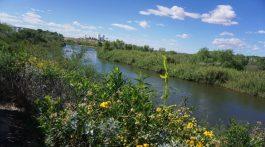 Yuma, Arizona and gila river