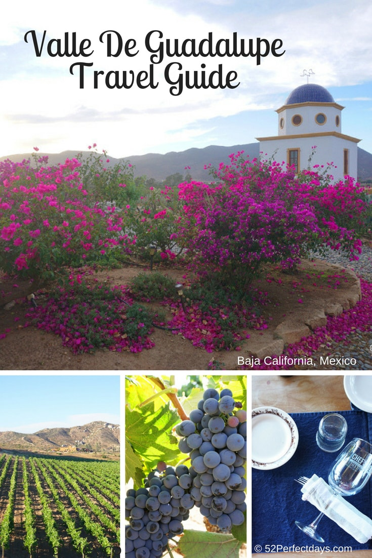 Valle de Guadalupe: A Visitor's Guide to Mexico's Wine Country • Planning a trip to Valle de Guadalupe, in Baja California, Mexico? Here are the best wineries, restaurants and more! Best things to eat, see and do. Travel guide + tips! #valledeguadalupe #mexico #winecountry #bajacalifornia #traveltips