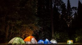 top-5-family-camping-spots-in-california