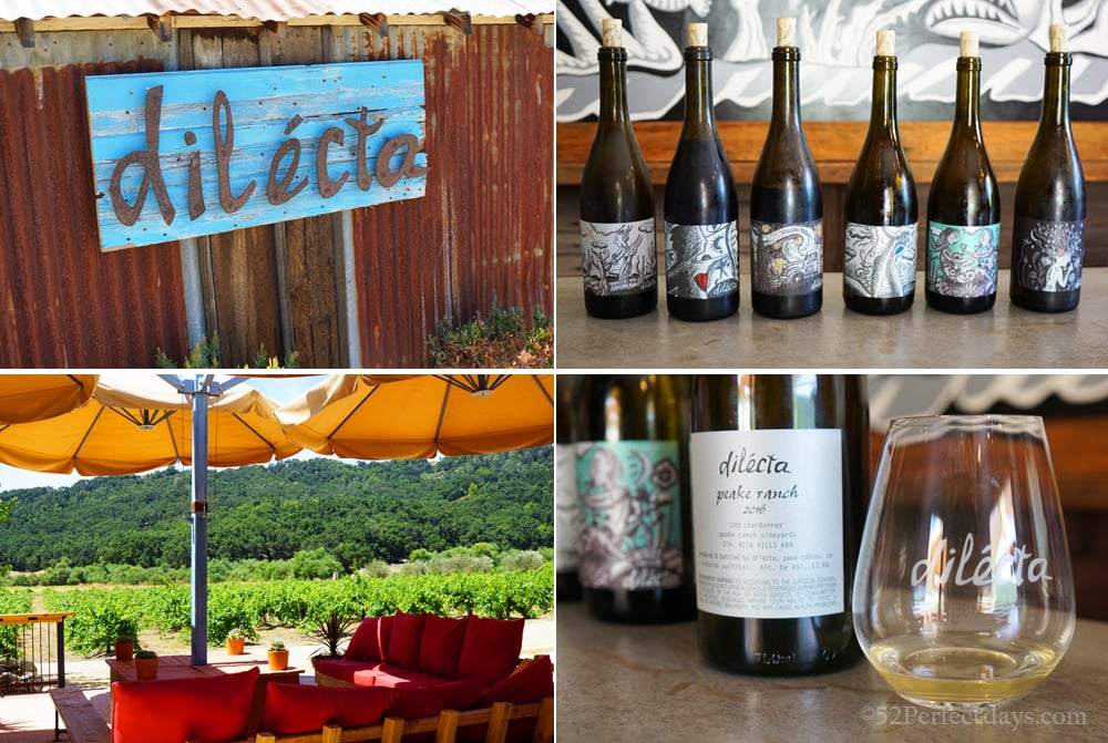 Dilecta in Paso Robles