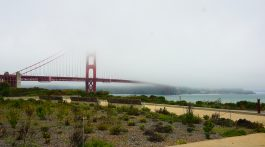 Golden Gate View from Presidio