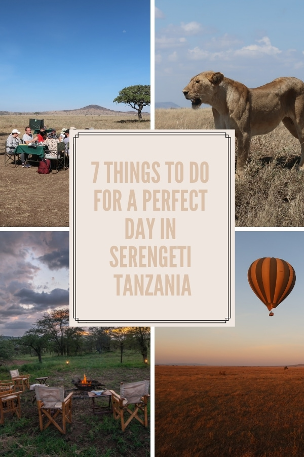7 Perfect Day Things To Do Serengeti