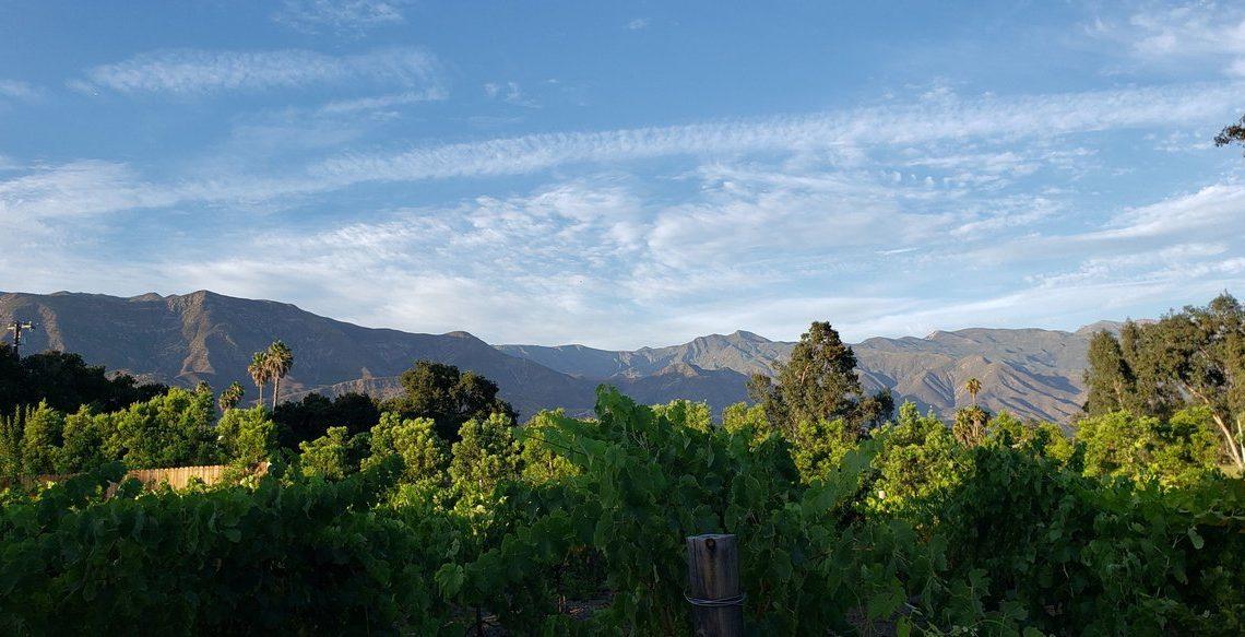 topa winery in ojai, ca