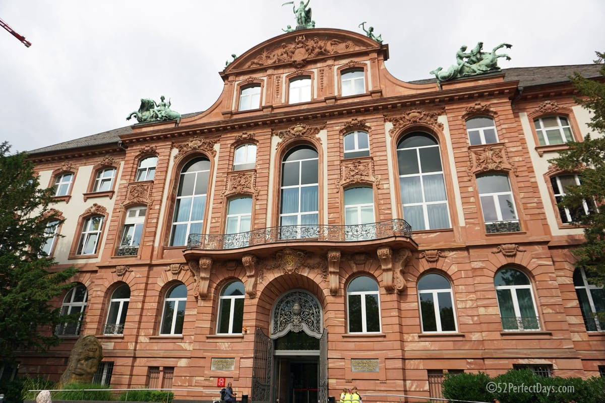 Natural History Museum (Senckenberg Museum)