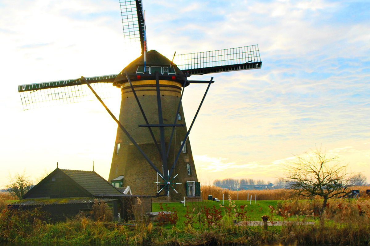 Windmills in Netherlands on Viking Cruise