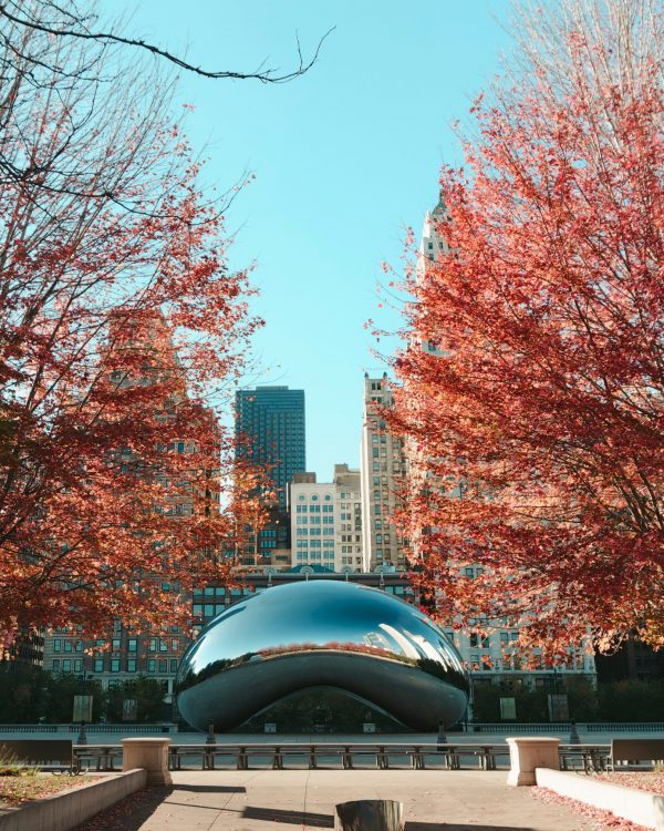 Spend a Perfect Day in Chicago
