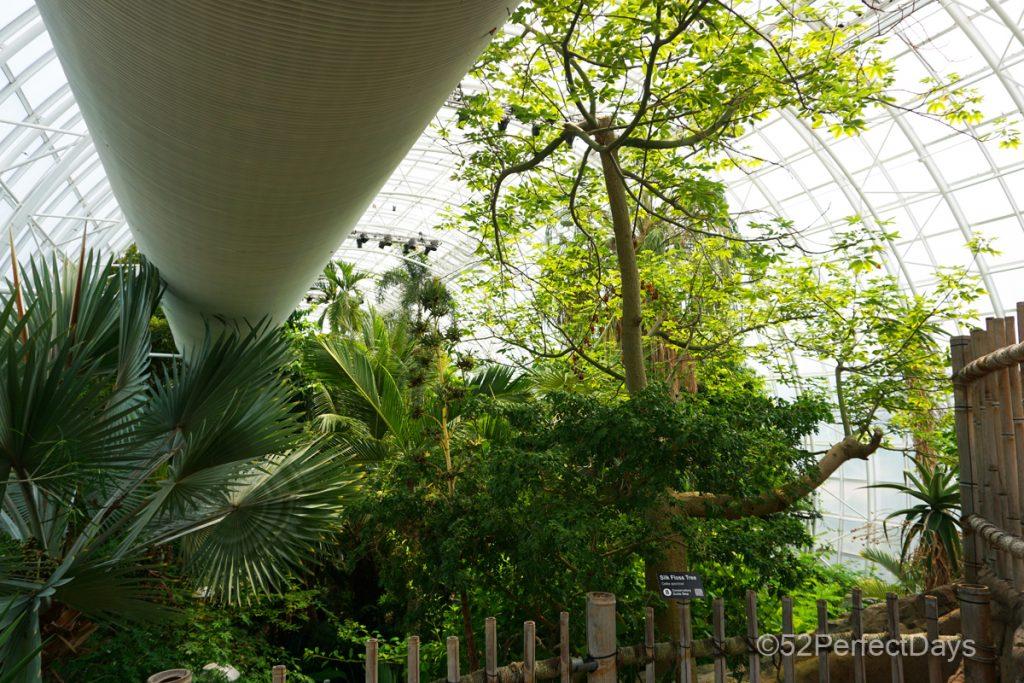 inside Myriad Botanical Gardens