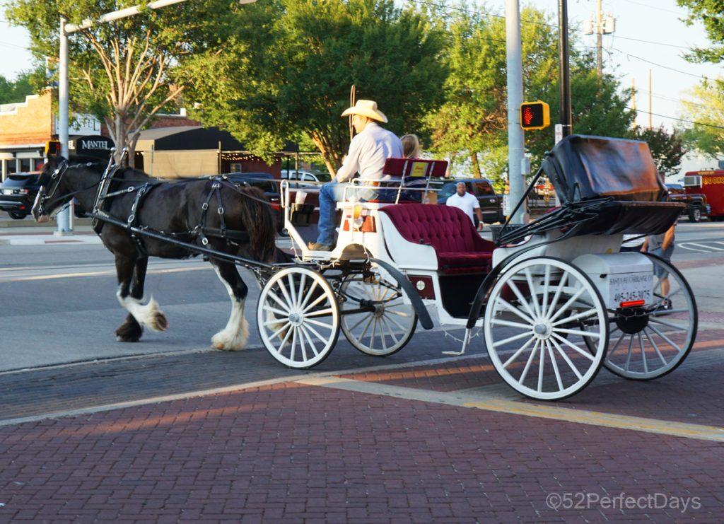 OKC Carriage ride