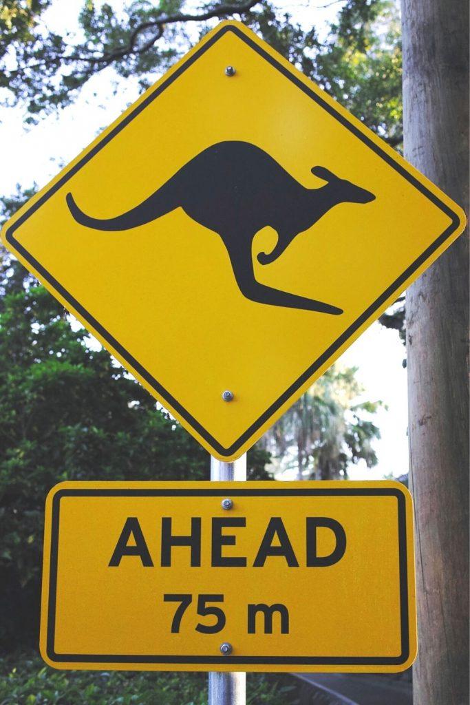 Australia Road Safety Slogans
