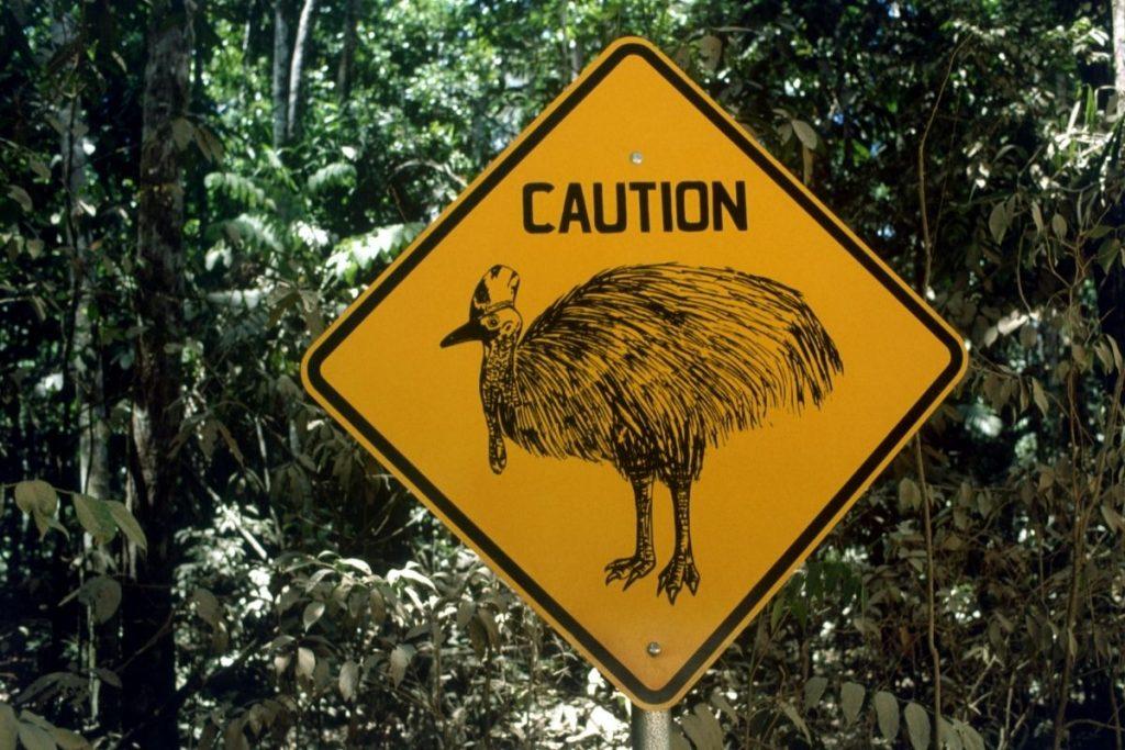 ostrich road sign